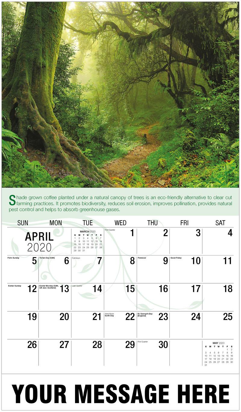 2020 Promotional Calendar - Forest Path - April