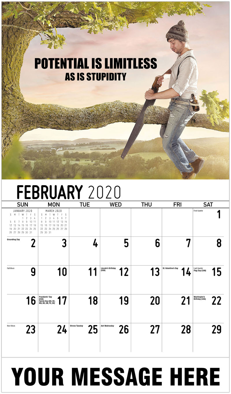 2020 Promo Calendar - Potential Is Limitless As Is Stupidity - February