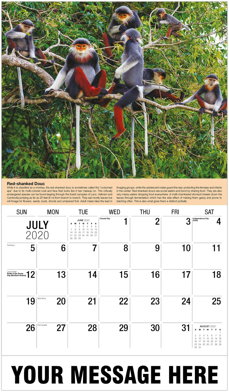 2020 Business Advertising Calendar - Red-Shanked Douc Family Group Feeding - July