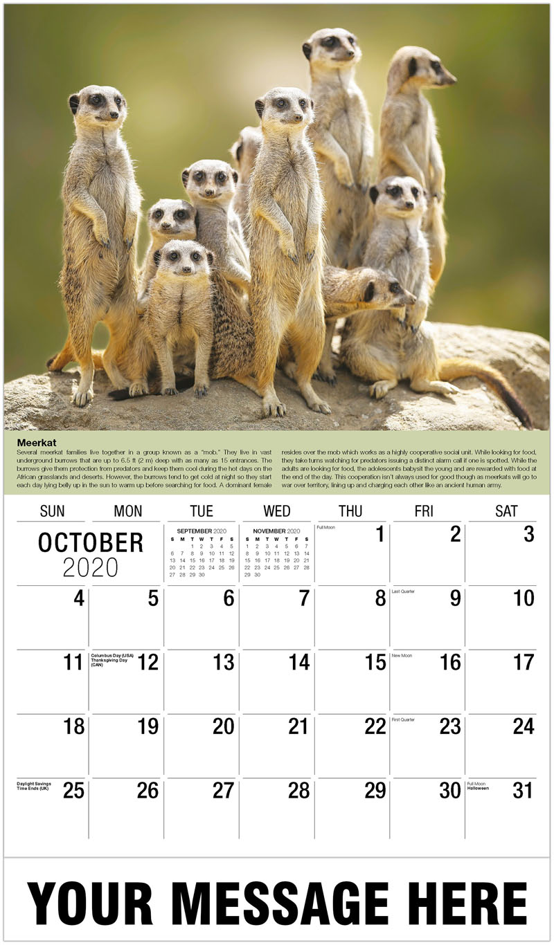 2020 Business Advertising Calendar - Alpine Ibex - October