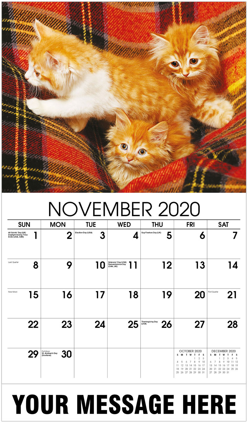 2020 Advertising Calendar - 3 Kittens In Folds Of The Plaid - November