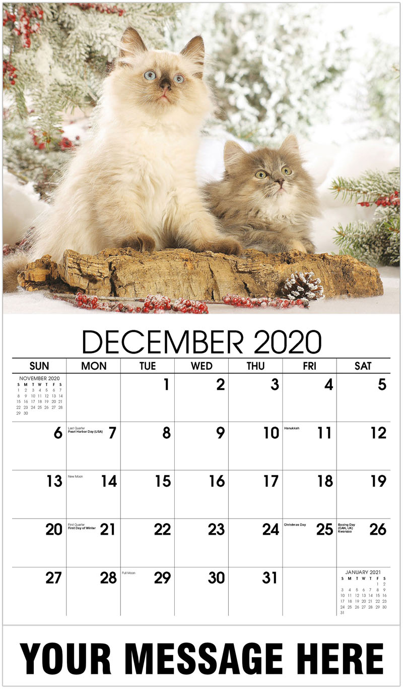 2020 Advertising Calendar - Kittens In Winter - December_2020