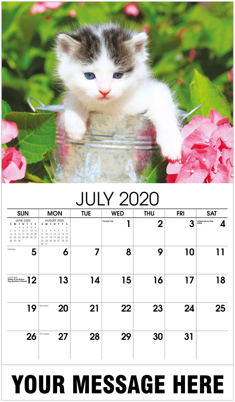 2020 Business Advertising Calendar - Kitten In A Pan - July