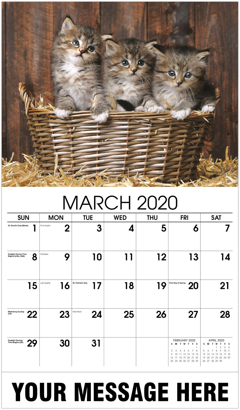 2020 Promo Calendar - Cute Kittens With Straw In A Barn - March
