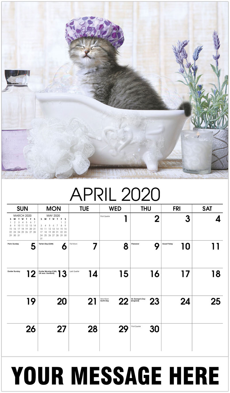 2020 Promo Calendar - Adorable Kitten In A Bathtub - April