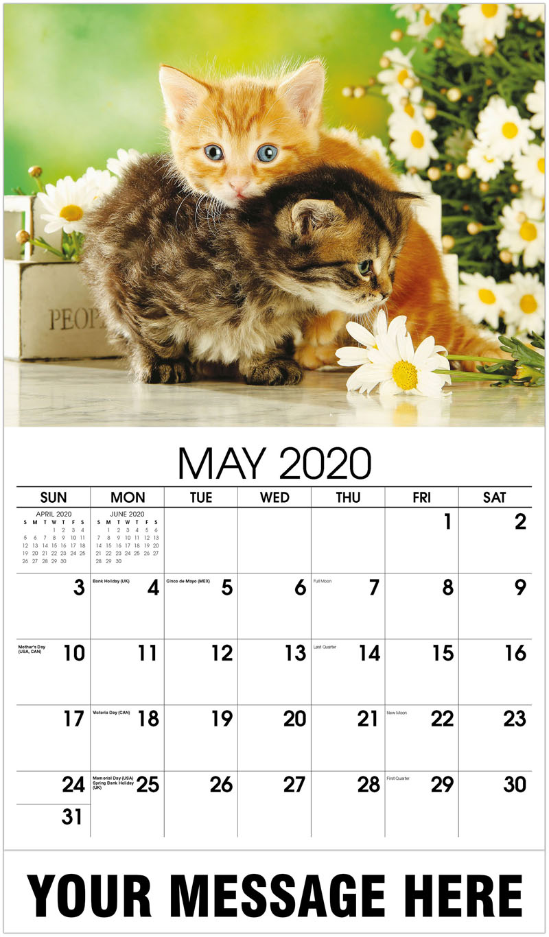 2020 Promo Calendar - Kittens Cuddling - May