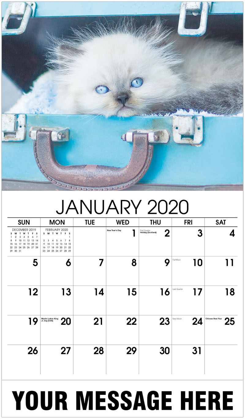 2020 Promotional Calendar - Baby Himalayan Cat In A Vintage Suitcase - January