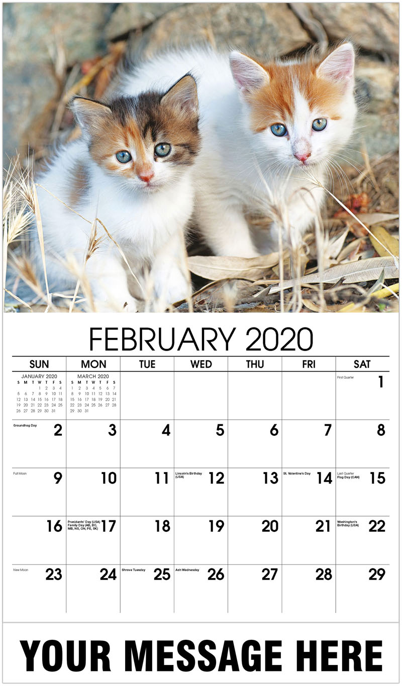 2020 Promotional Calendar -  Two Kittens Sitting Outdoors - February