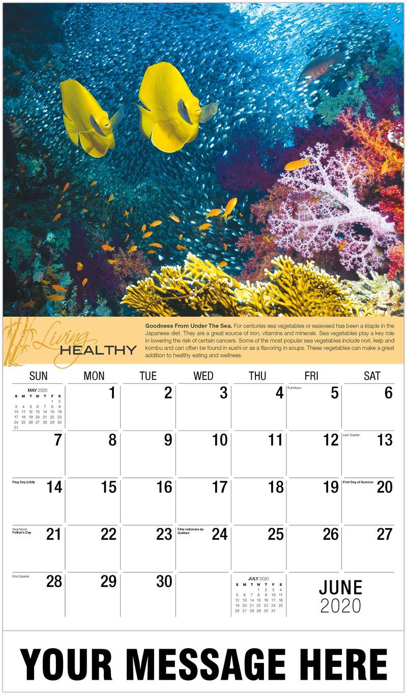 2020 Promo Calendar - Coral Reef Scenery - June