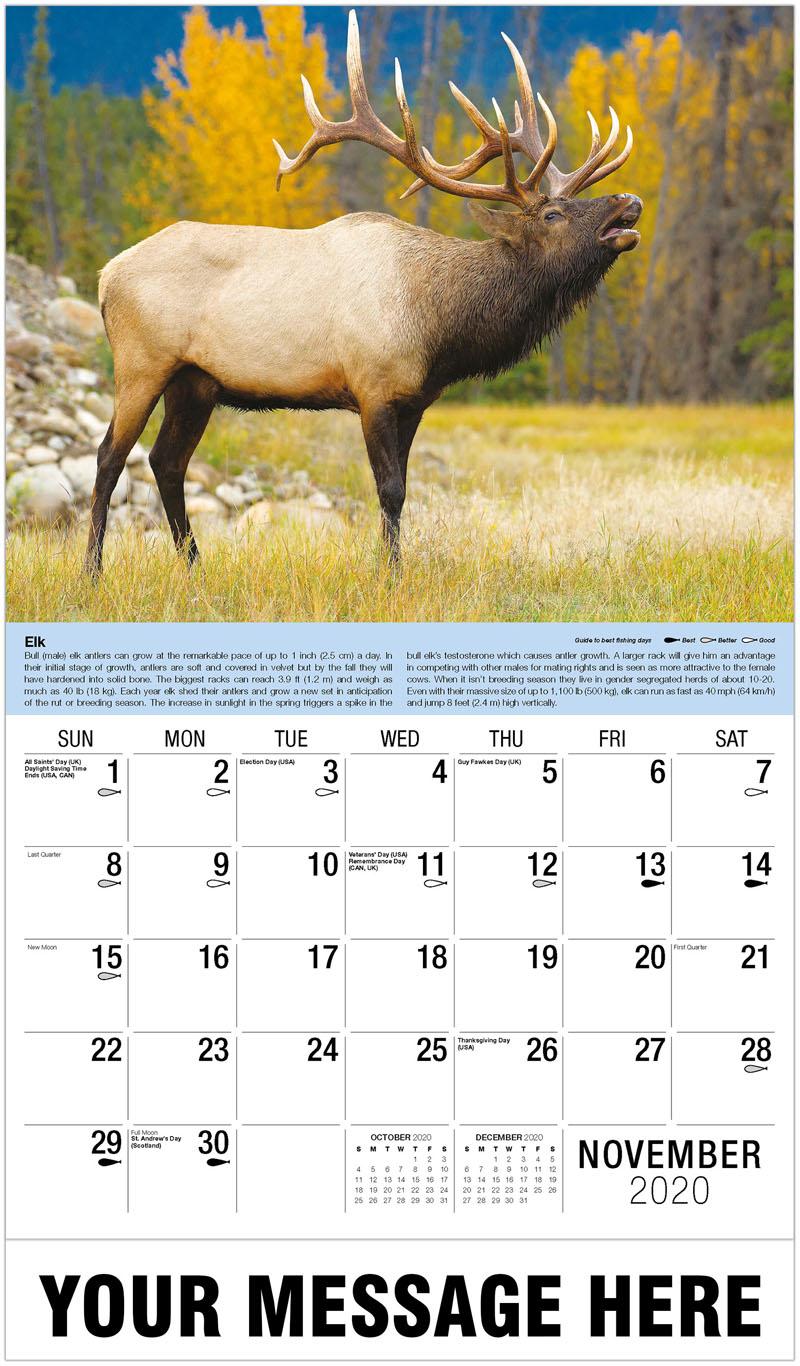 2020 Advertising Calendar - Elk - November