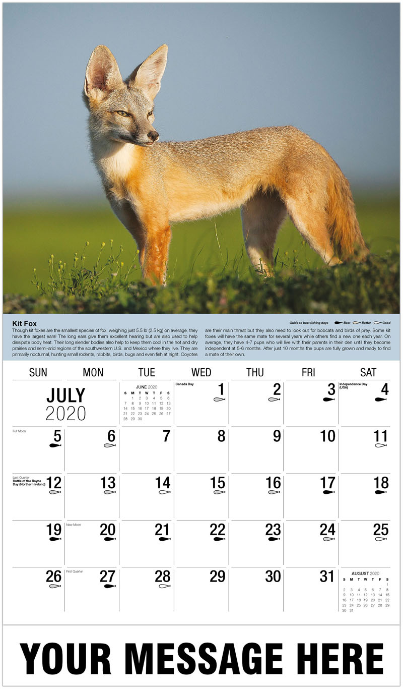 2020 Business Advertising Calendar - Kit Fox - July
