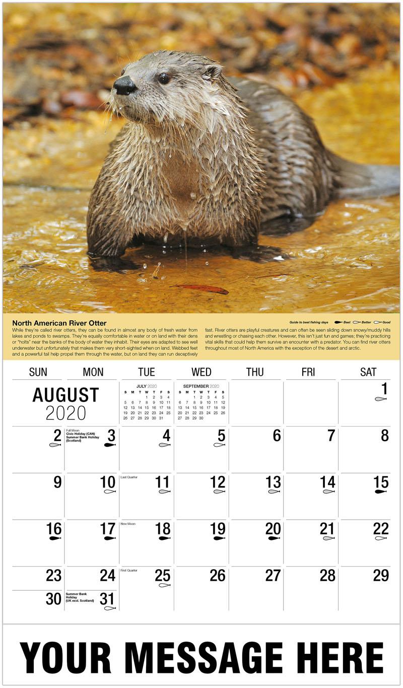 2020 Business Advertising Calendar - River Otter - August