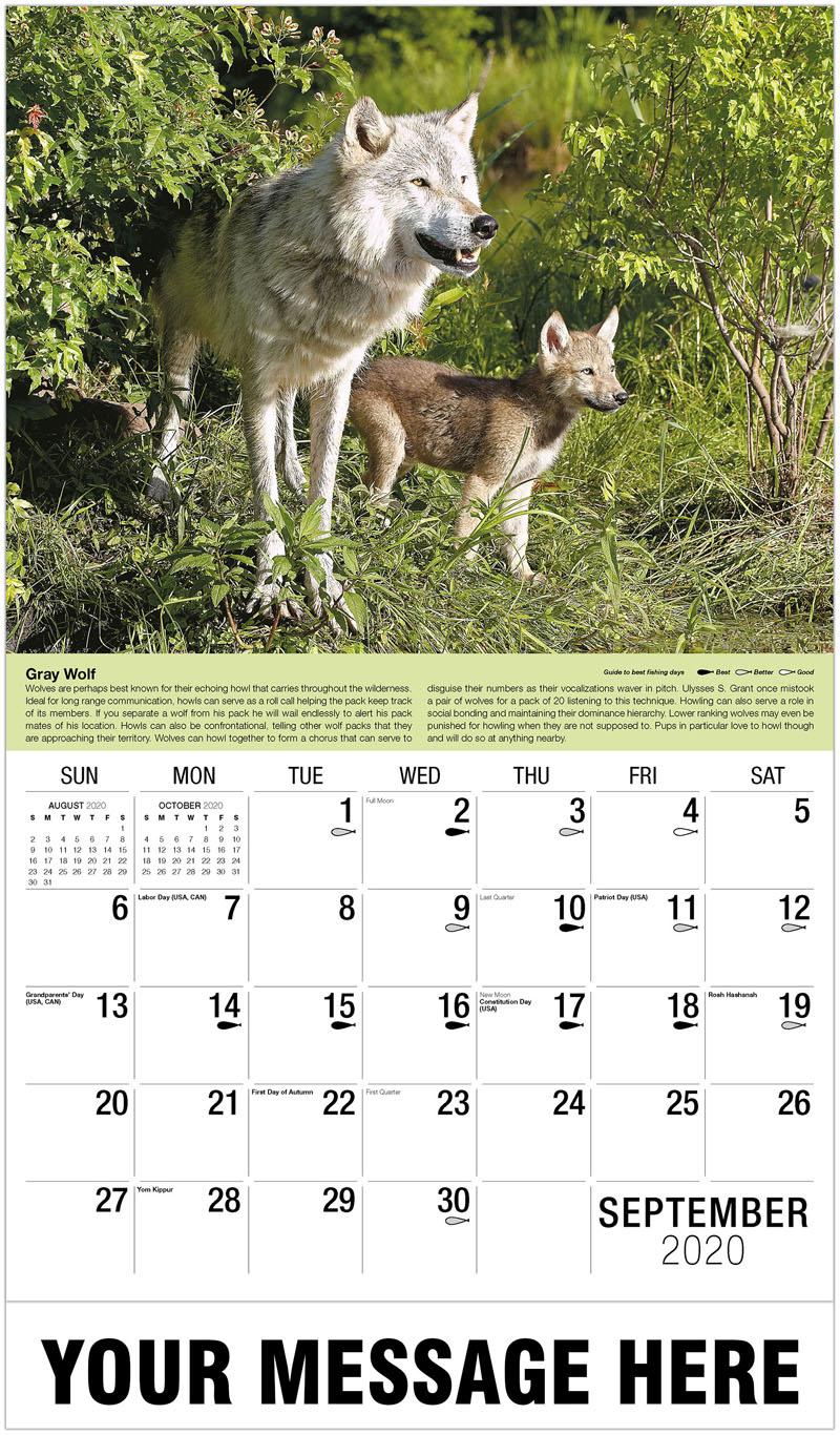 2020 Business Advertising Calendar - Gray Wolf - September