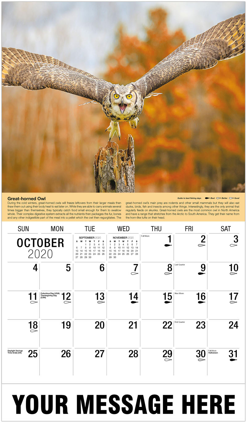 2020 Business Advertising Calendar - Flying Grey Horned Owl - October