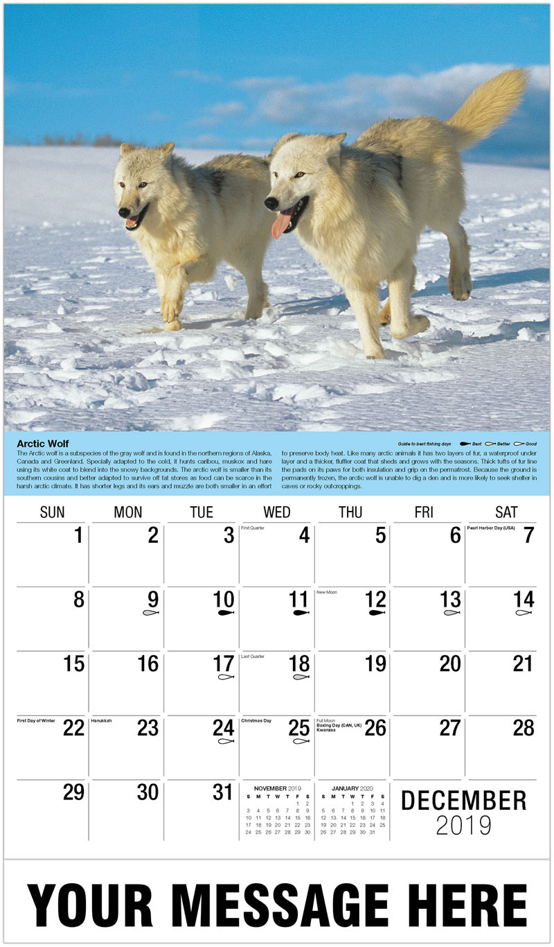 2020 Promotional Calendar - Grey Wolves - December_2019