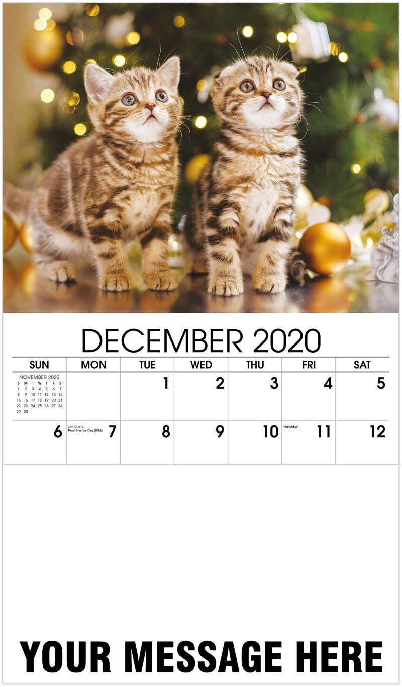 2020 Advertising Calendar - British Kitten - December_2020