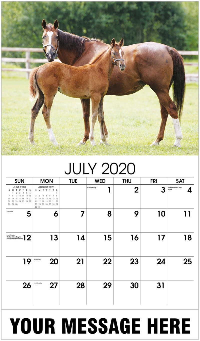 2020 Business Advertising Calendar - Foal And Mare In A Paddock - July