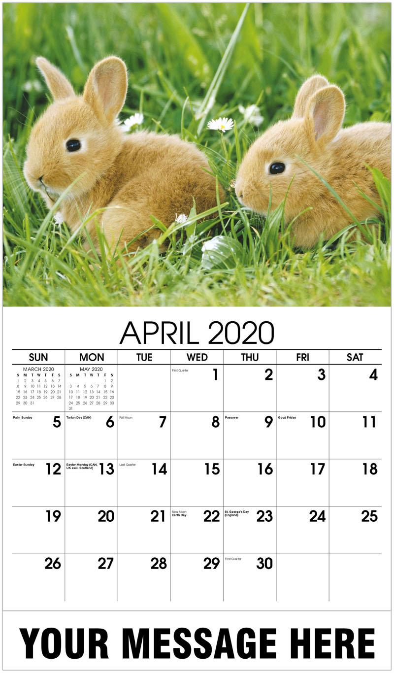 2020 Promo Calendar - 2 Bunnies - April