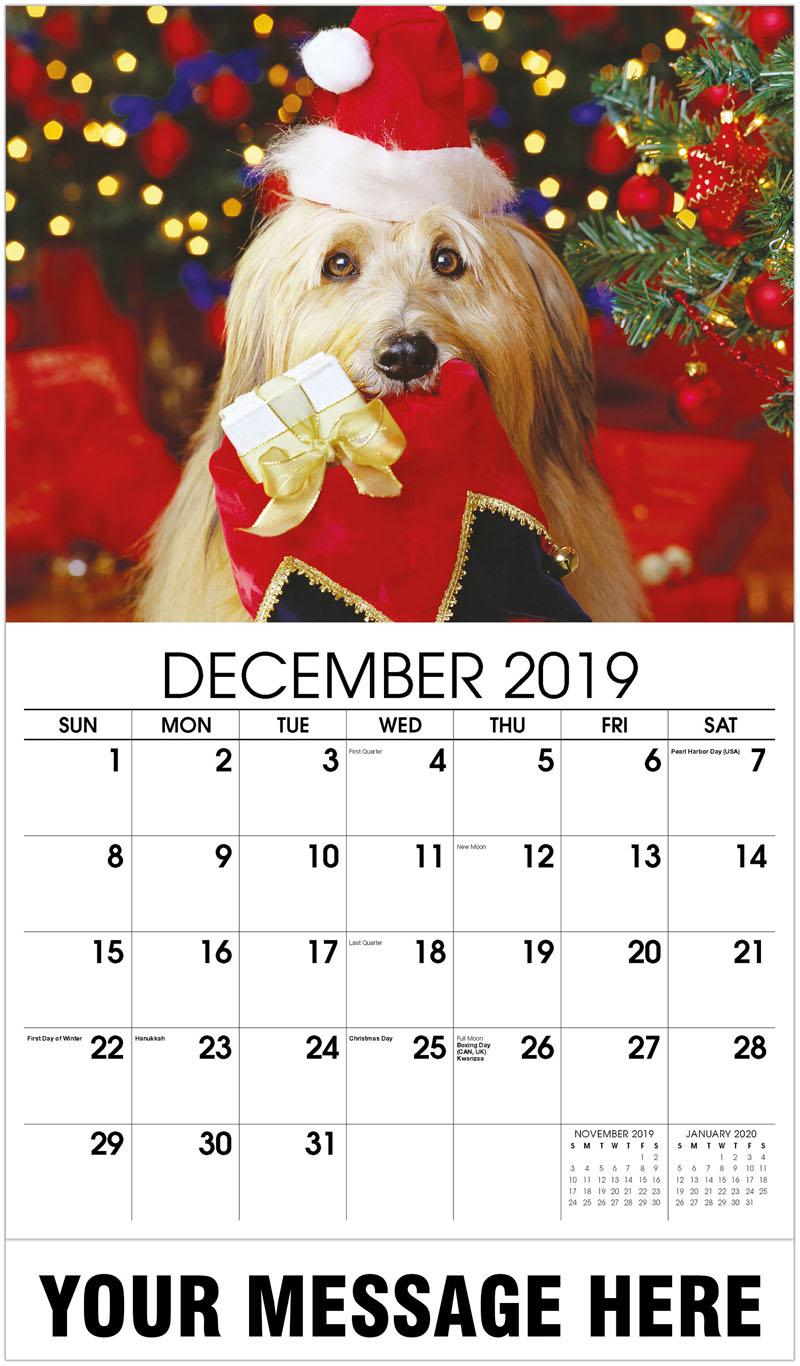 2020 Promotional Calendar - Dog With Santa Hat - December_2019
