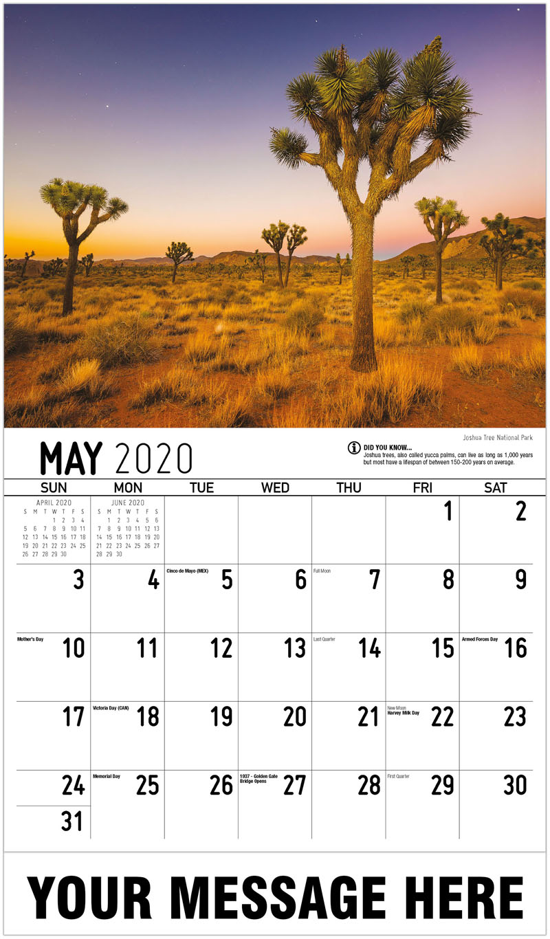 2020 Promo Calendar - Joshua Tree National Park - May
