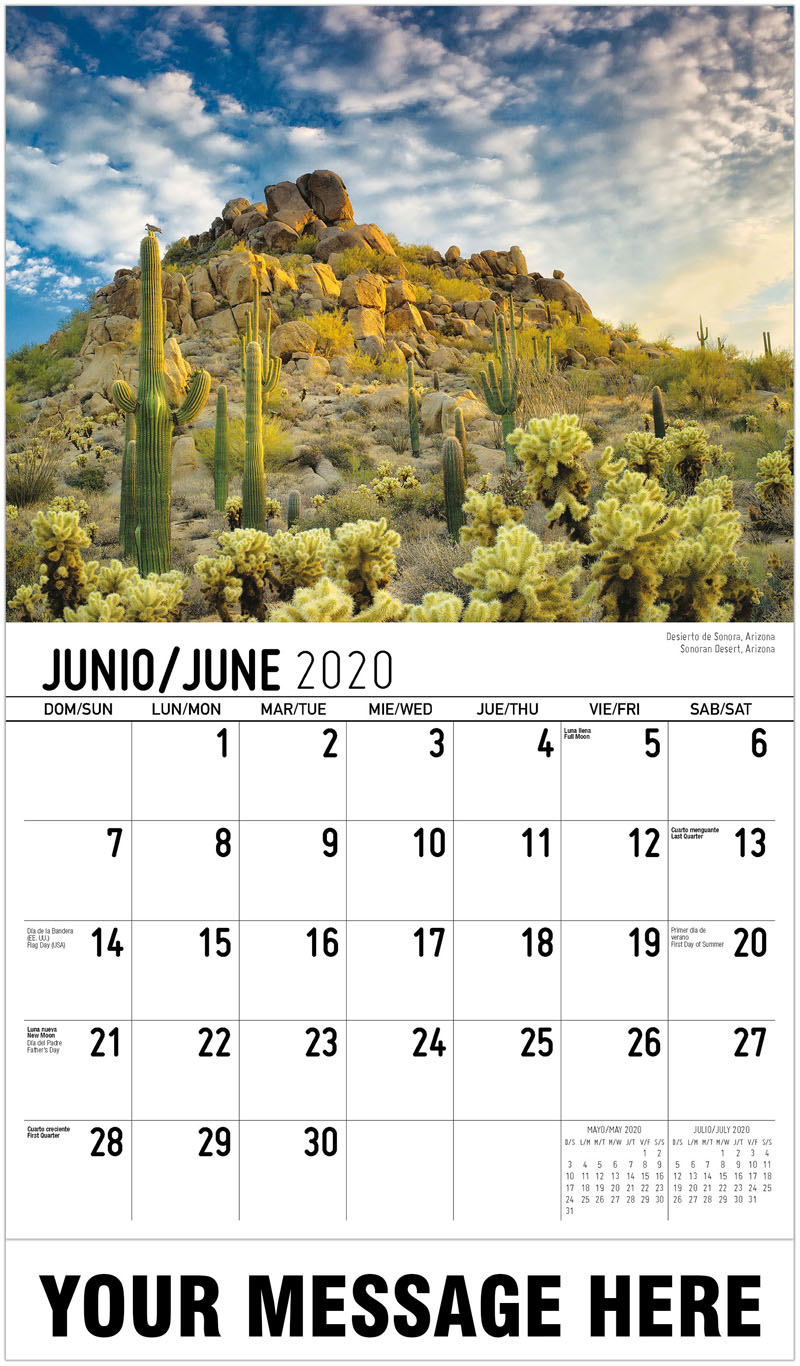 2020  Spanish-English Promotional Calendar - Desierto De Sonora, Arizona Sonoran Desert, Arizona - June