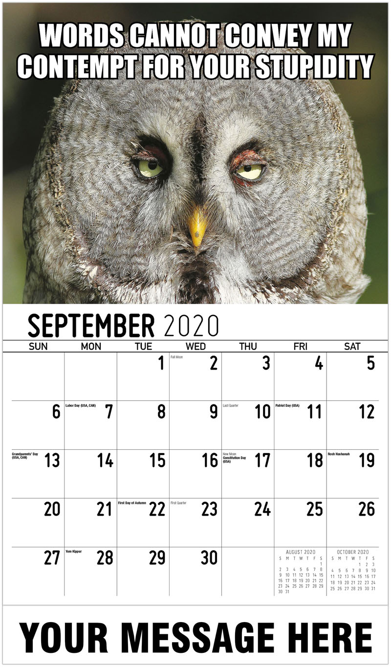 2020 Business Advertising Calendar - Words Cannot Convey My Contempt For Your Stupidity - September