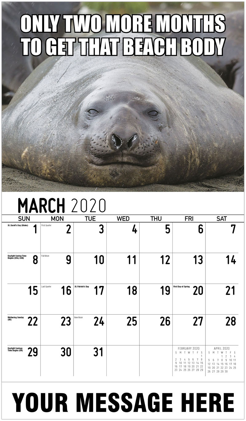 2020 Promotional Calendar - Only Two More Months To Get That Beach Body - March
