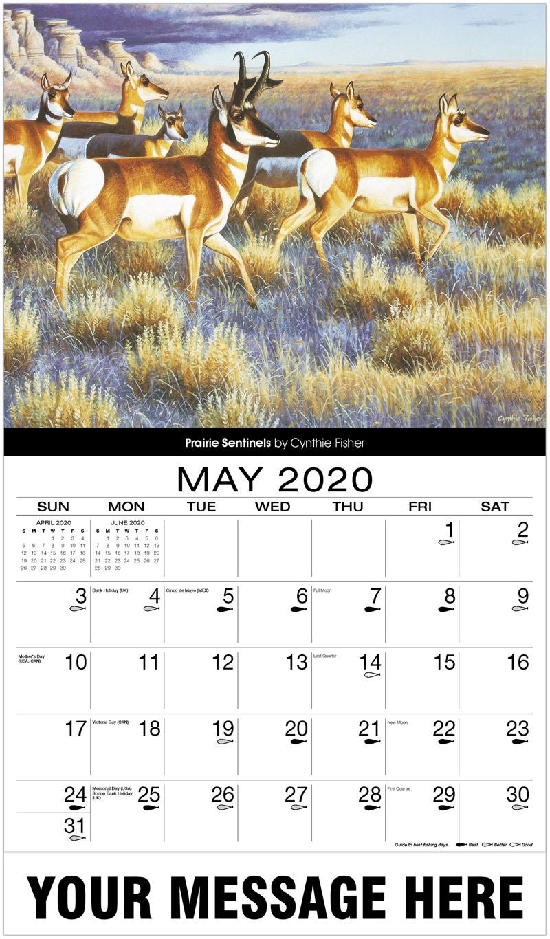 2020 Promotional Calendar - Prairie Sentinels - May