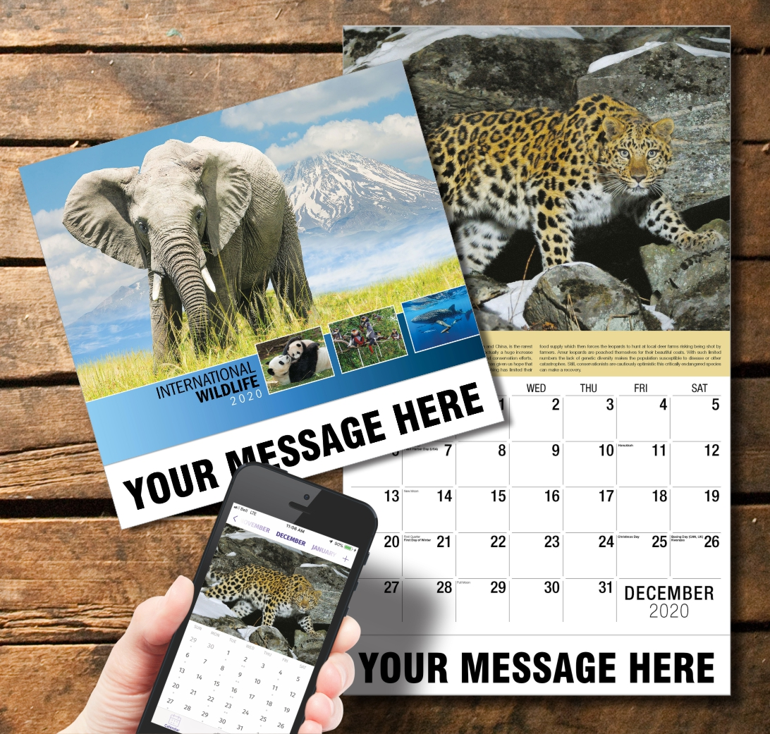 2020 Business Promotion Calendar - International Wildlife and PlumTree app