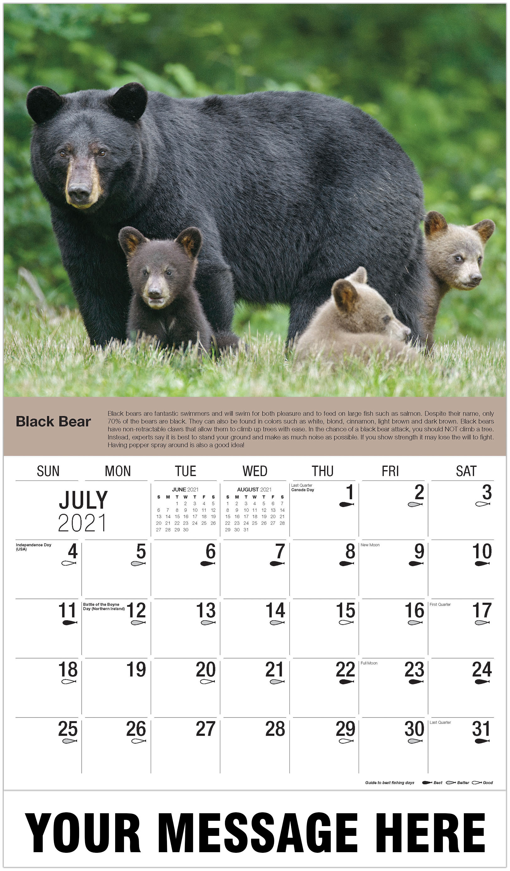 Black Bear With Cubs - July - North American Wildlife 2021 Promotional Calendar