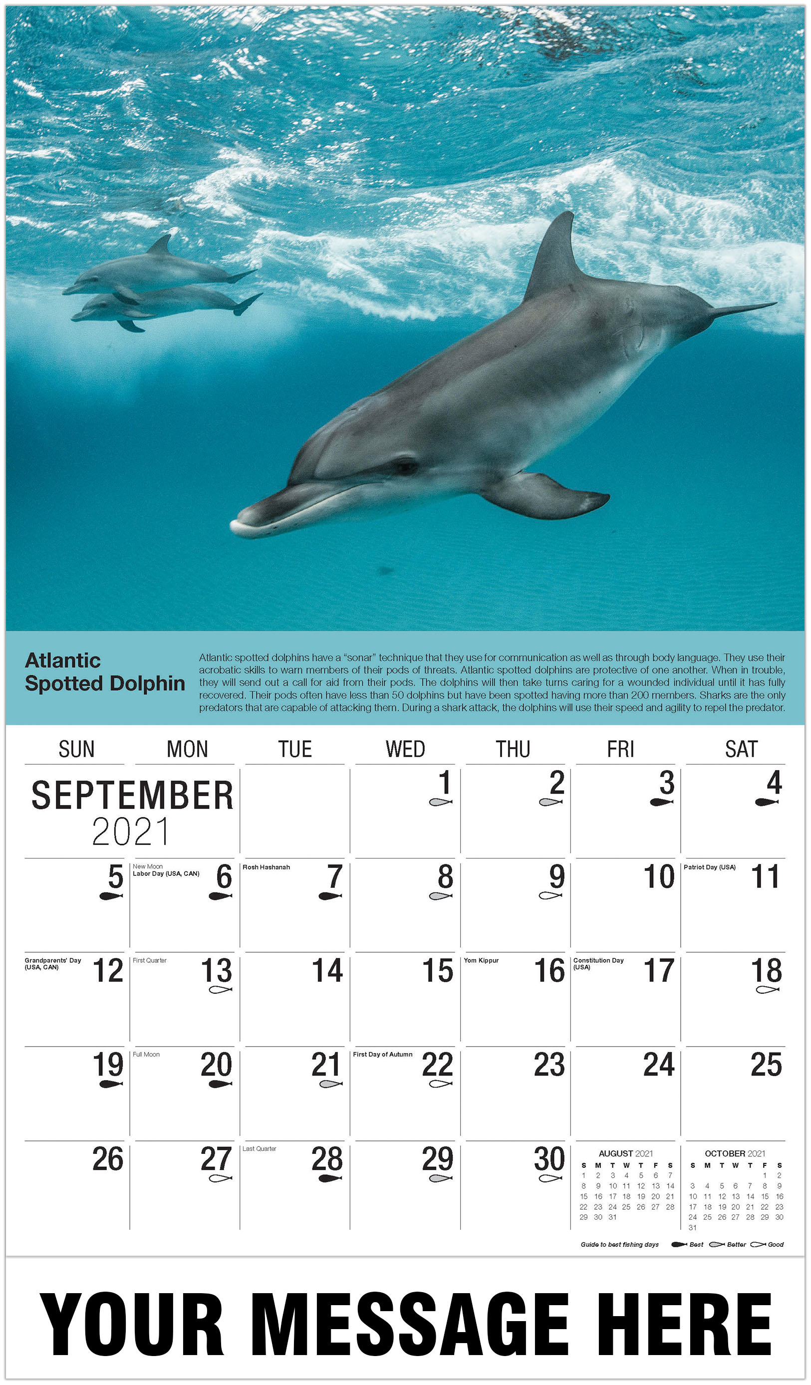 Atlantic Spotted Dolphins - September - North American Wildlife 2021 Promotional Calendar