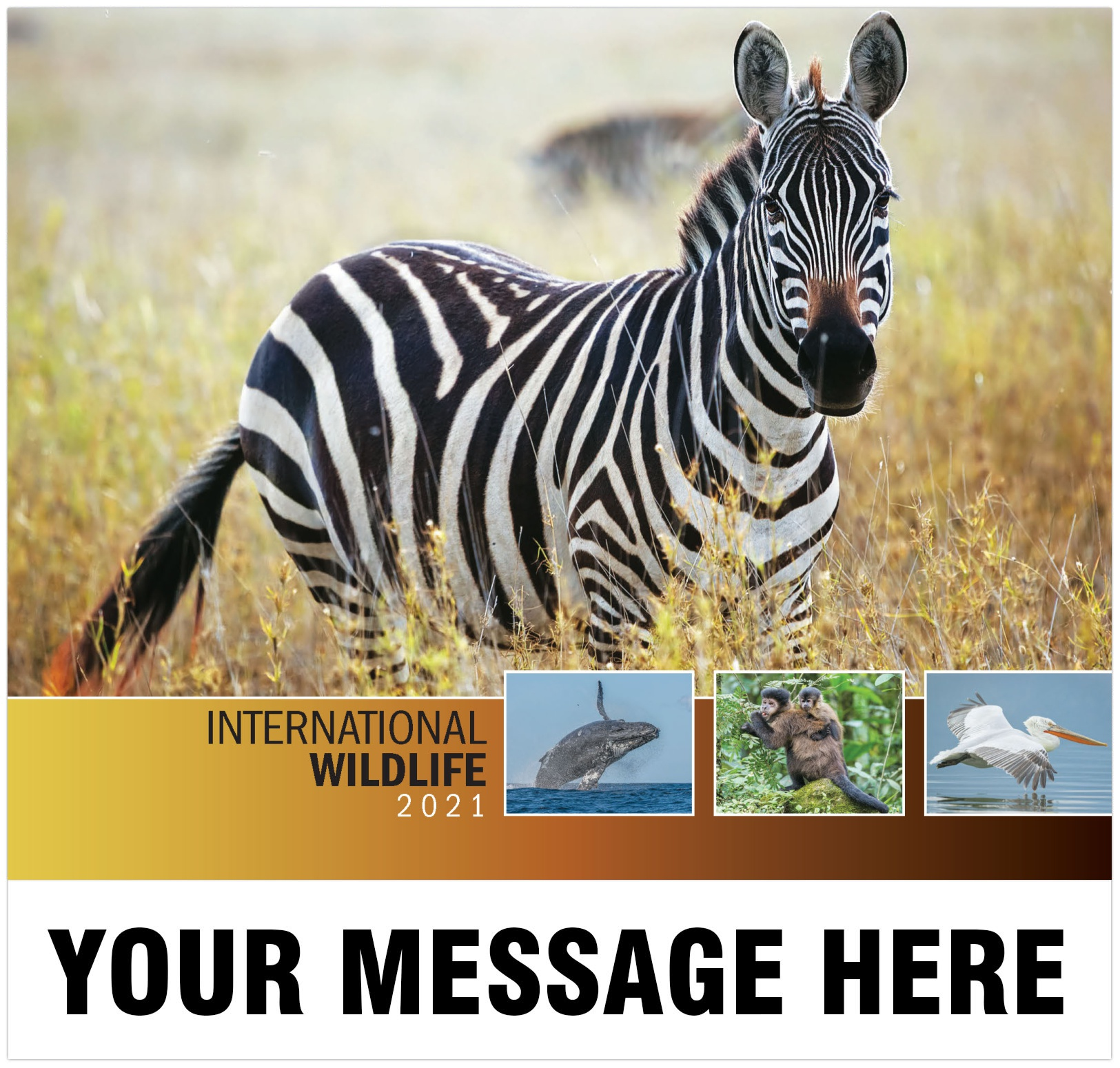 2021 International Wildlife Promotional Calendar