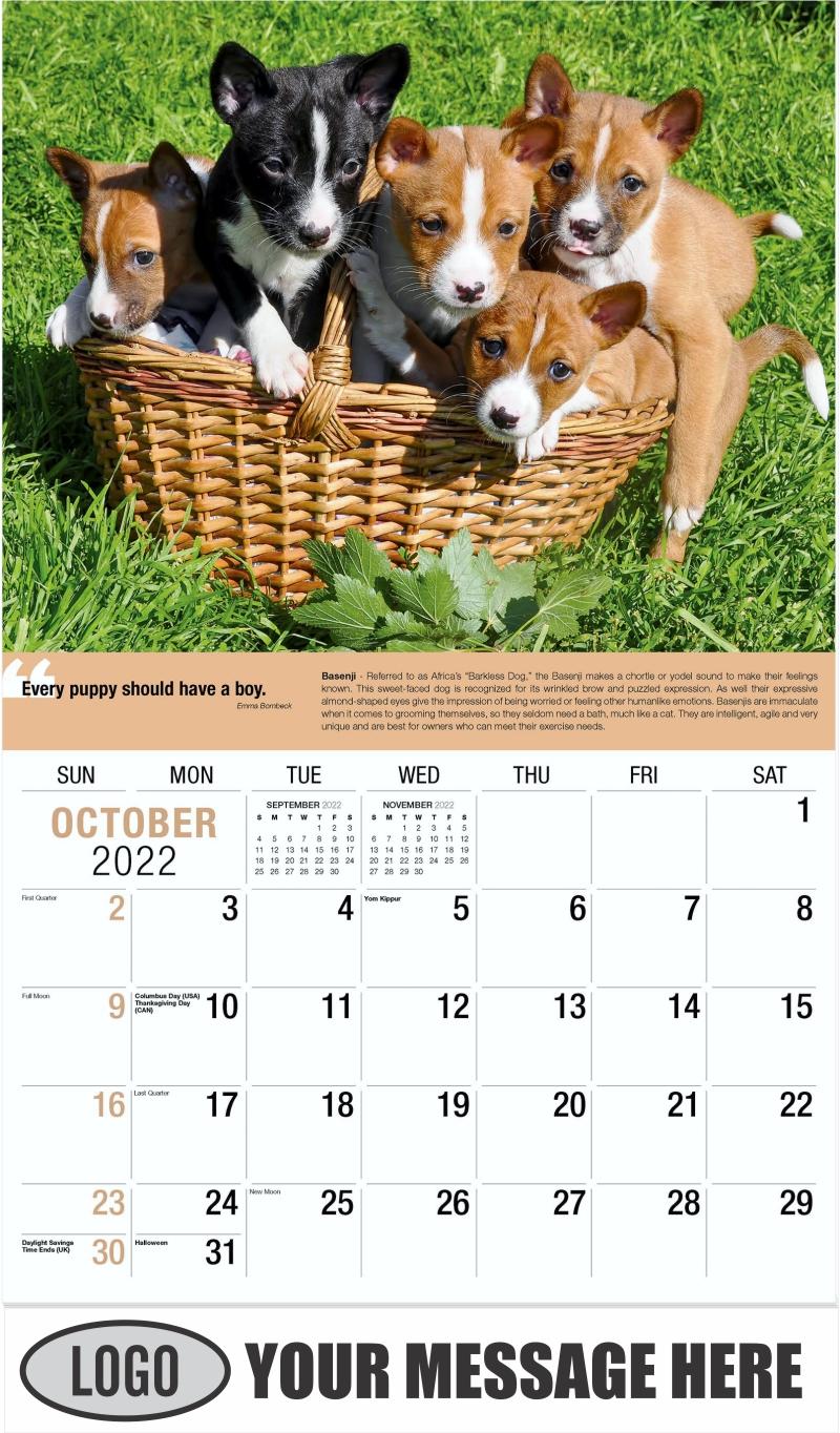 Basenji - October - Dogs,