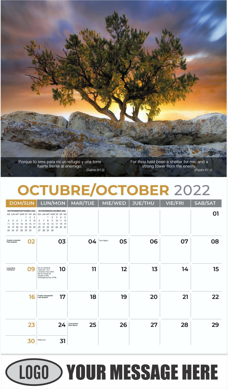 Pine tree growing on top of rock. - October - Faith-Passages-Eng-Sp 2022 Promotional Calendar