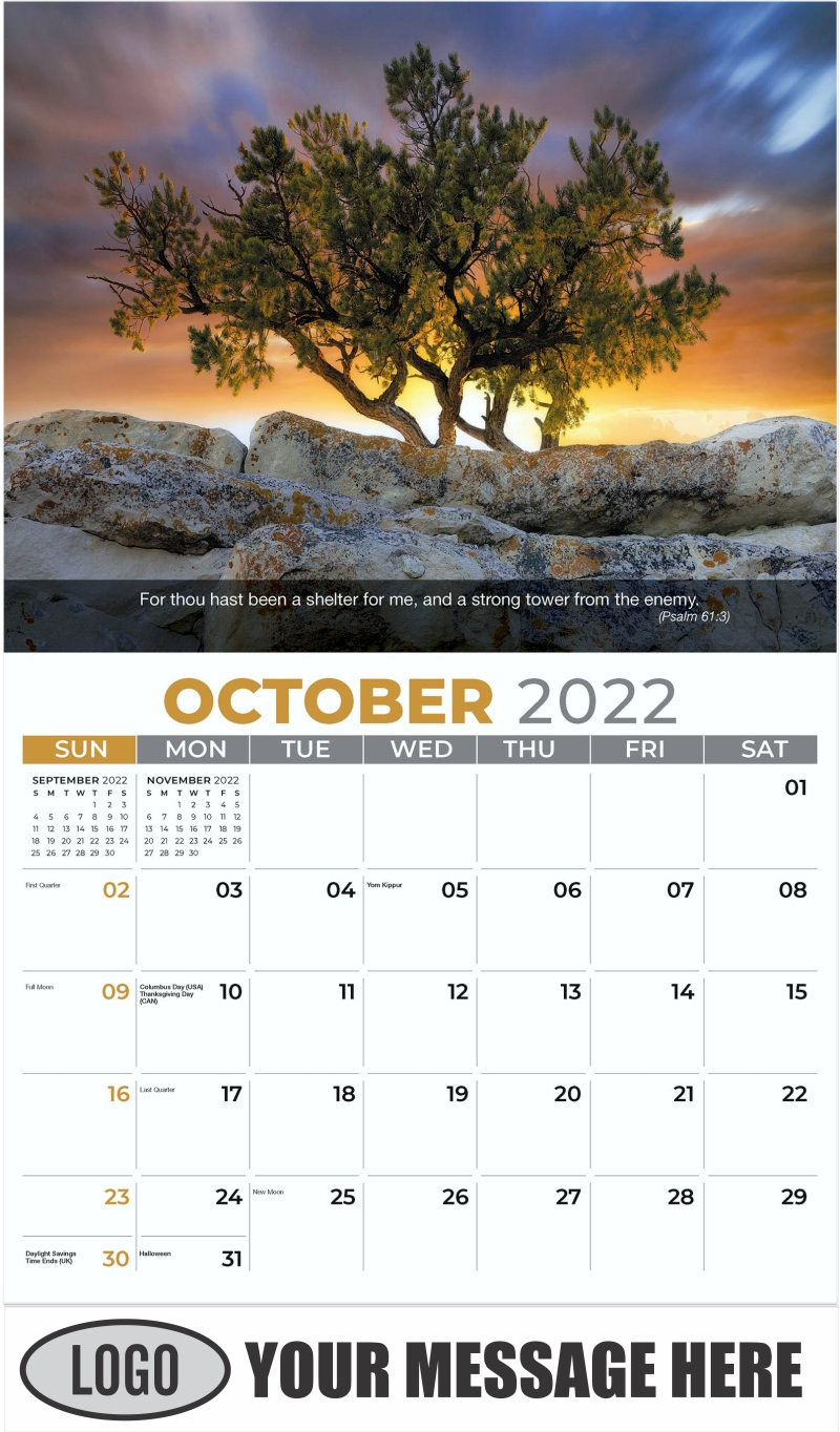 Pine tree growing on top of rock. - October - Faith Passages 2022 Promotional Calendar