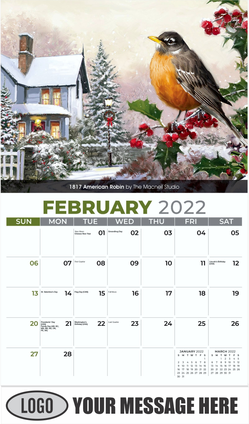 1817 American Robin by The Macneil Studio - February - Garden Birds 2022 Promotional Calendar