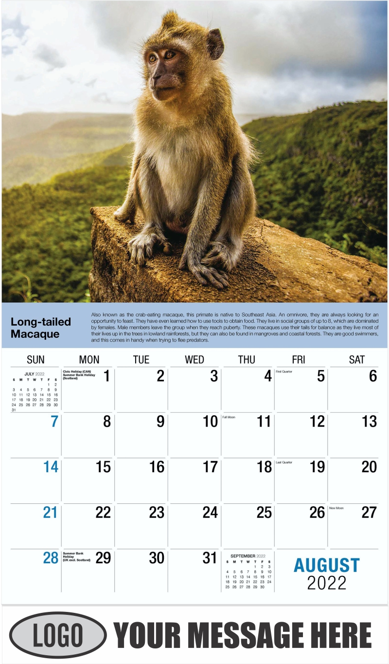 Long-tailed Macaque - August - International Wildlife 2022 Promotional Calendar