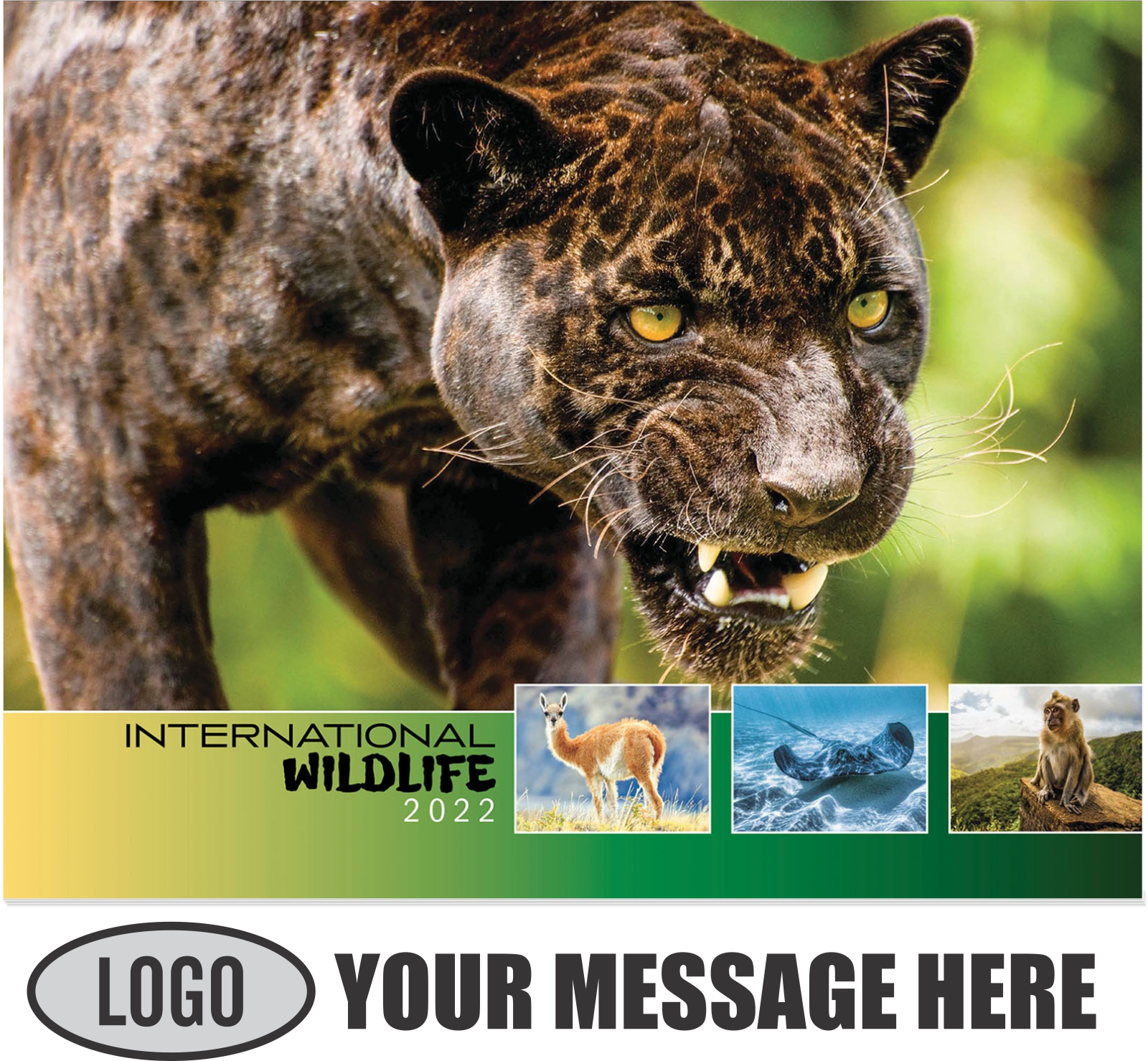 2022 International Wildlife Promotional Calendar