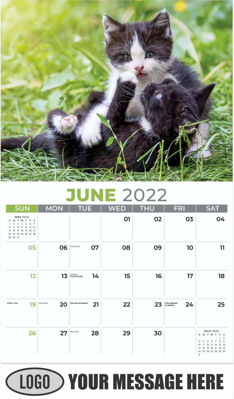 Two Felix - June - Kittens 2022 Promotional Calendar