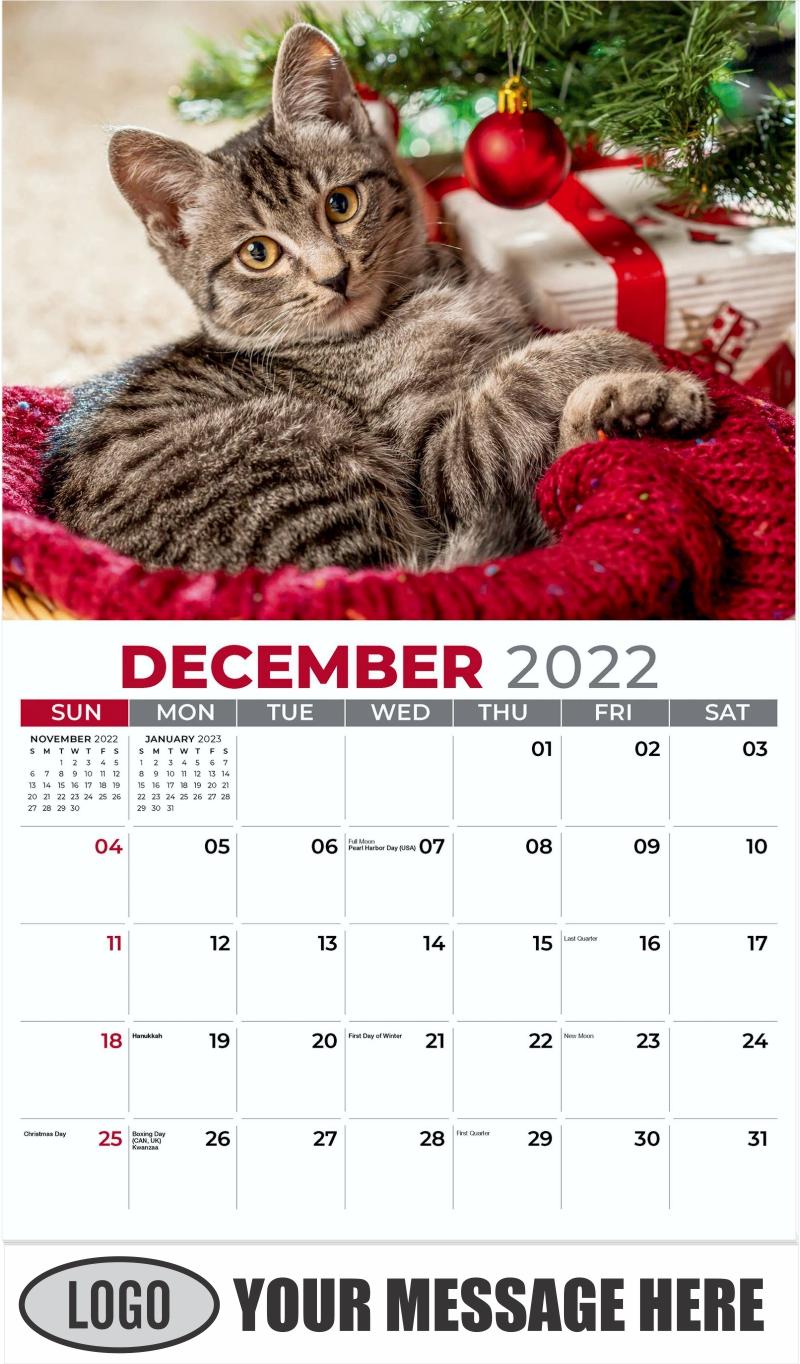 Tabby under Christmas Tree - December 2022 - Kittens 2022 Promotional Calendar