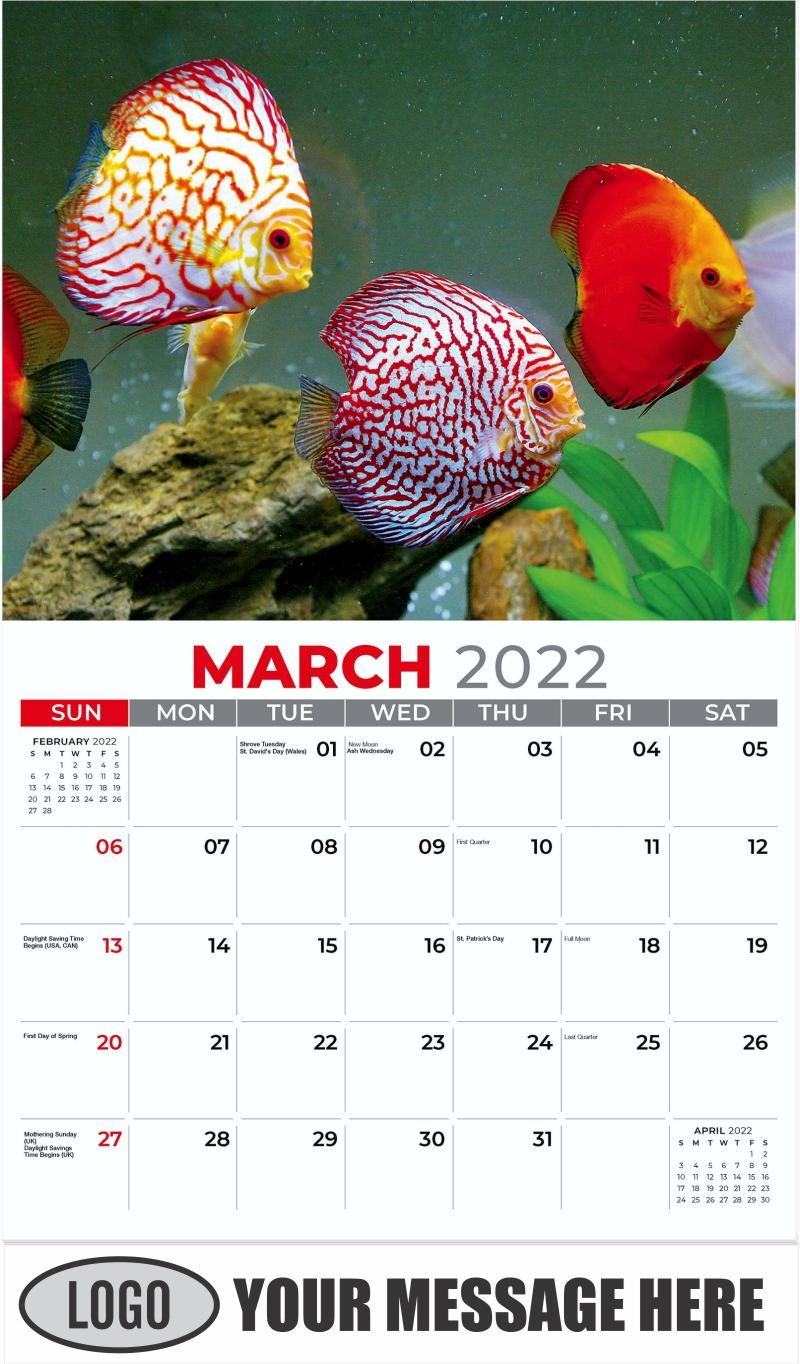 March - Pets 2022 Promotional Calendar