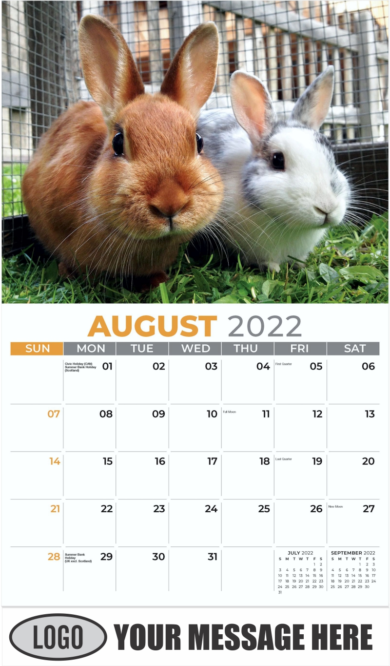 Two Rabbits - August - Pets 2022 Promotional Calendar