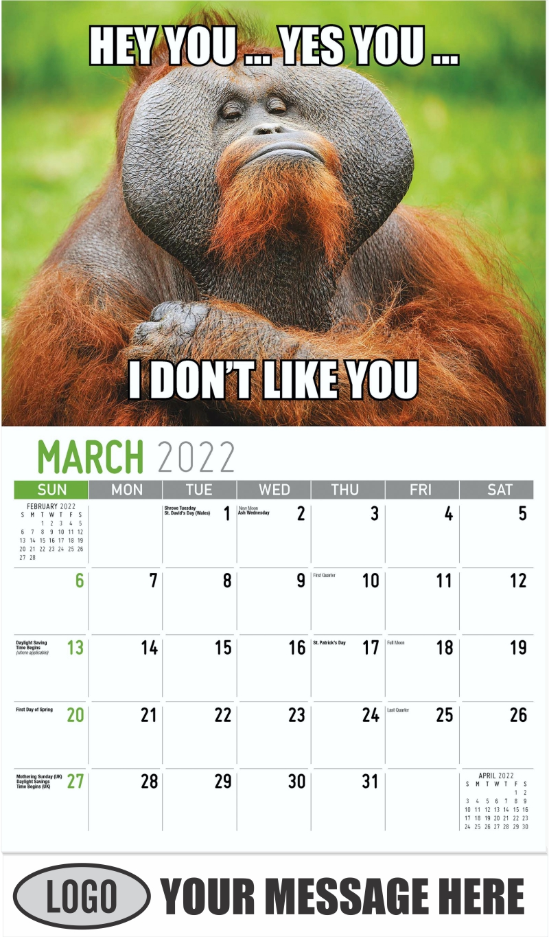 HEY YOU… YES YOU… I DON'T LIKE YOU - March - The Memeing of Life 2022 Promotional Calendar