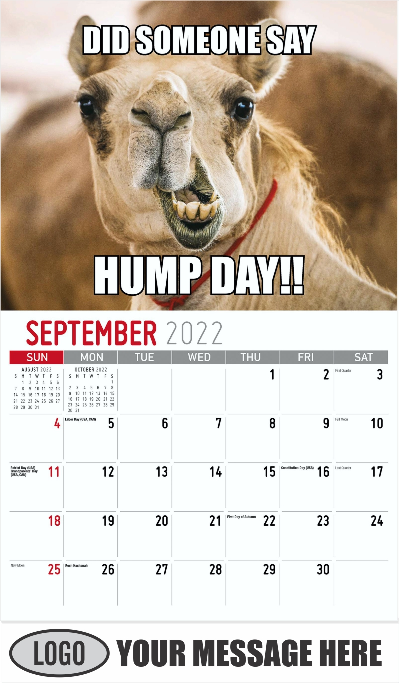 DID SOMEONE SAY HUMP DAY! - September - The Memeing of Life 2022 Promotional Calendar