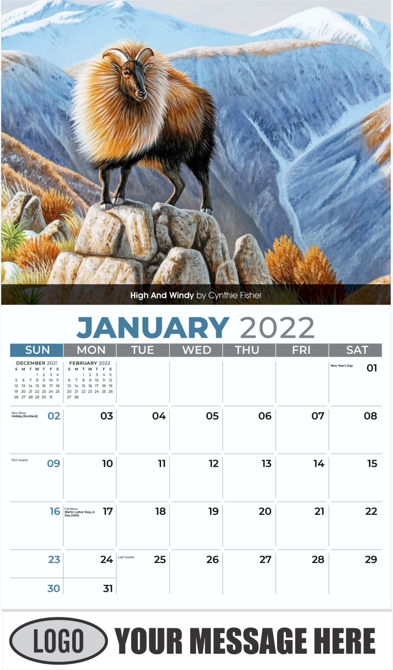 High And Windy by Cynthie Fisher - January - Wildlife Portraits 2022 Promotional Calendar