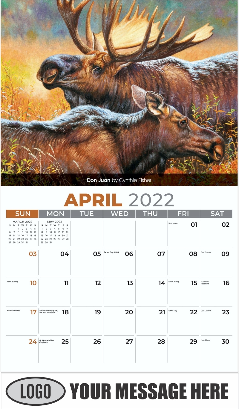 Don Juan by Cynthie Fisher - April - Wildlife Portraits 2022 Promotional Calendar