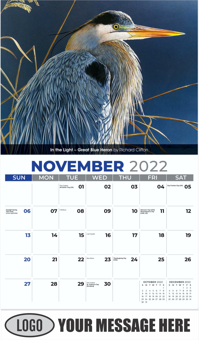 In the Light - Great Blue Heron by Richard Clifton - November - Wildlife Portraits 2022 Promotional Calendar